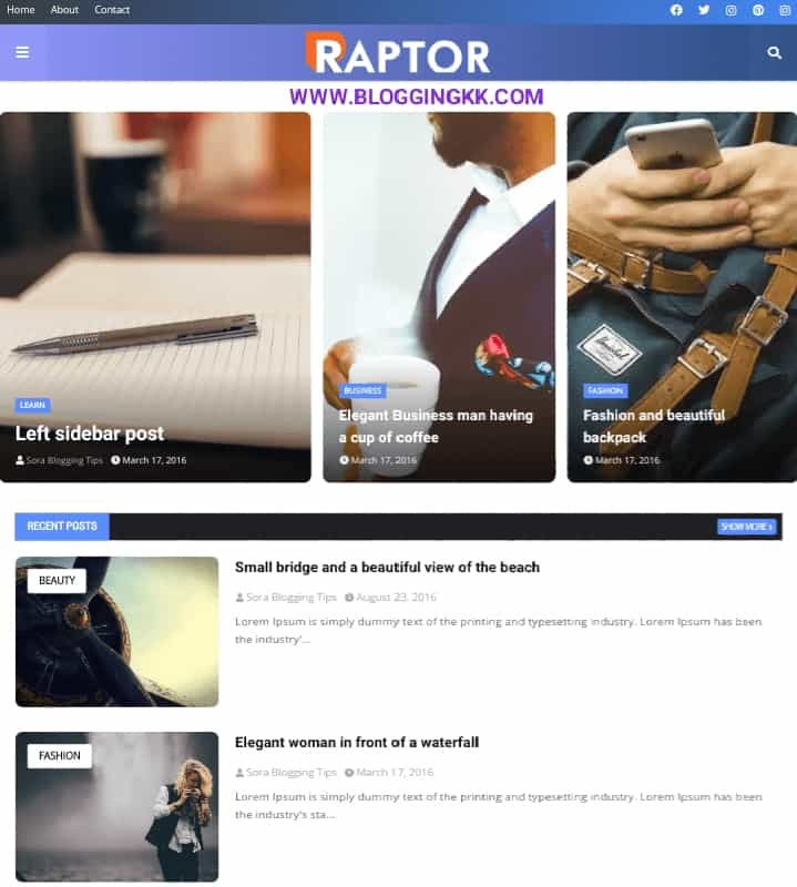 Raptor-Blogger-Template
