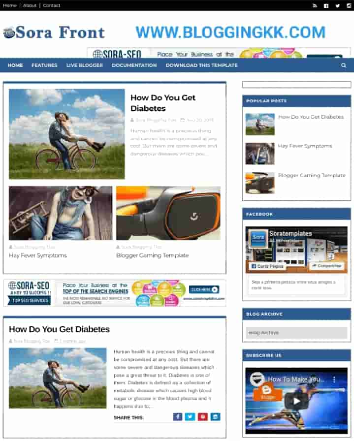 SoraFront–Best-Template-For-AdSense-Approval